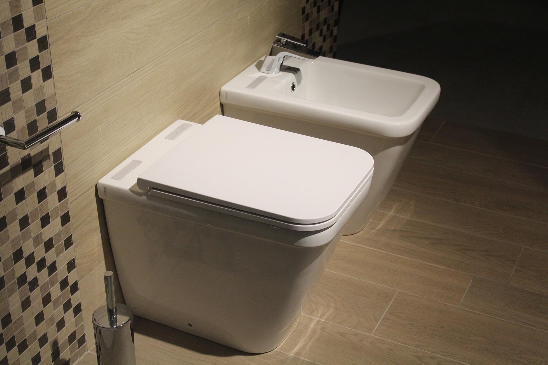sanitaire sanibroyeur